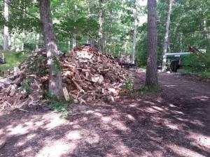 Firewood Tree Service Company